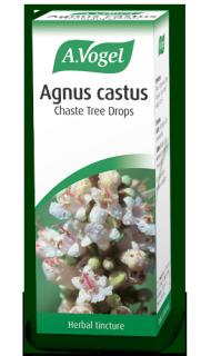 agnus-castus